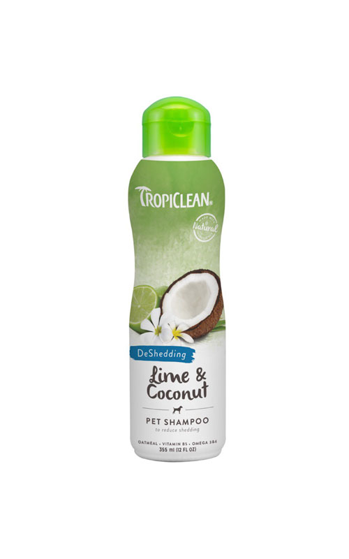 Lime-and-coconut-shampoo